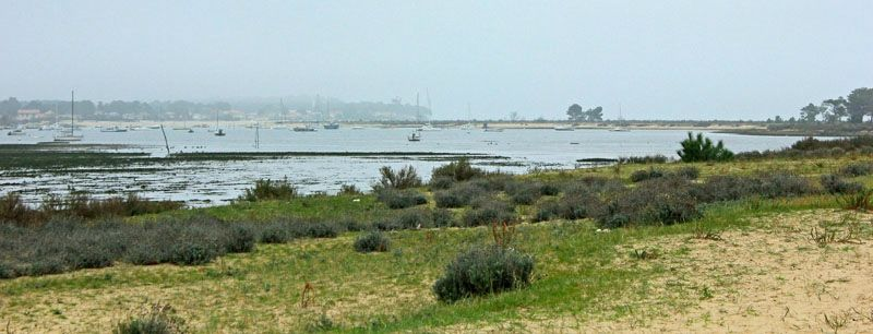 bassin10 arcachon dans découverte